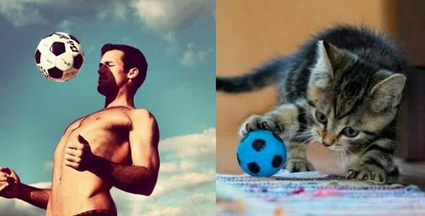 Судьба-Женщина-Кошка