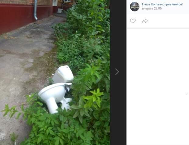 Жители Большой Академической не оценили фаянсовый «арт-объект» на клумбе