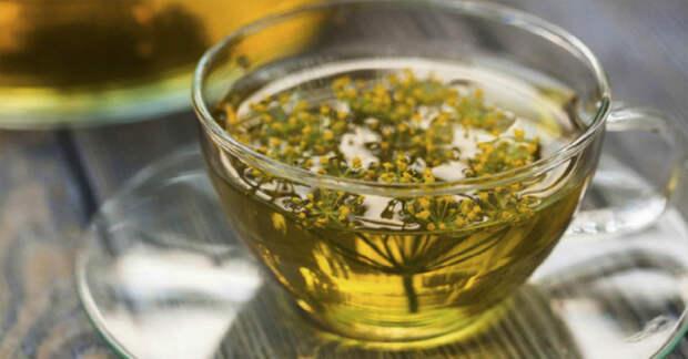 Уникальные свойства чая из укропа помогут похудеть и снизит газообразование в кишечнике