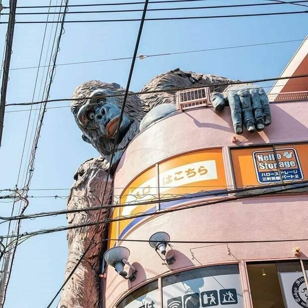 Горилла на здании жизнь, подборка, странность, фотография, фотомир, явление, япония