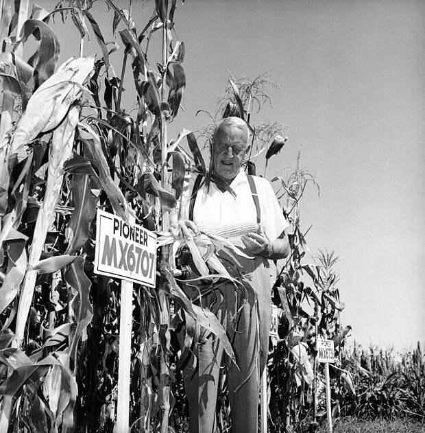 Как американский фермер стал закадычным другом Хрущева