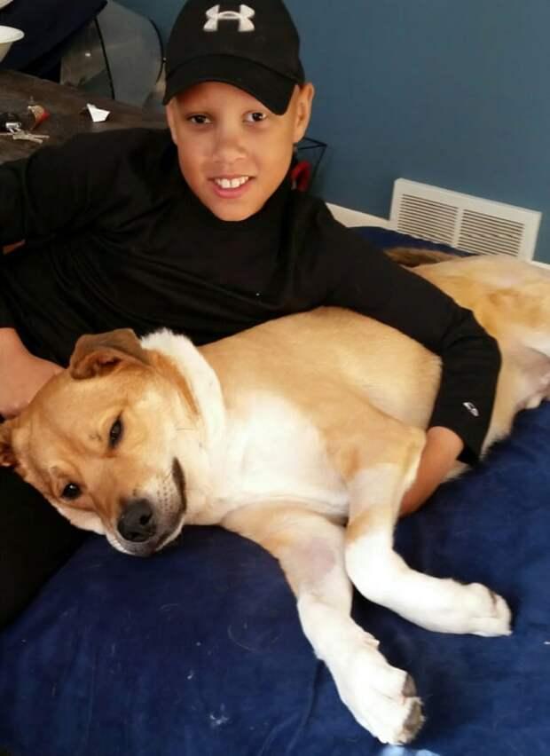 Парень обнимает собаку