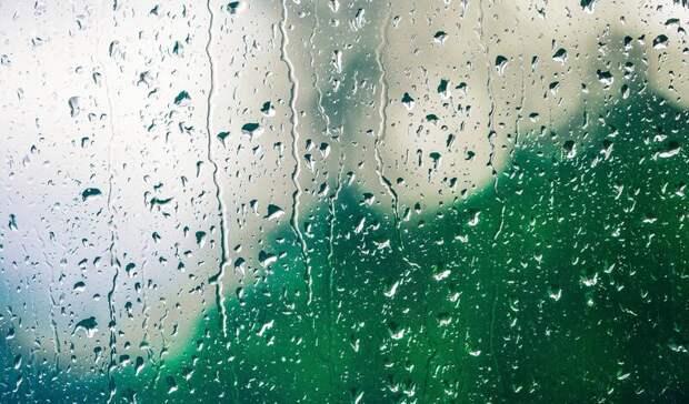 Синоптики рассказали о погоде в Петрозаводске в начале недели