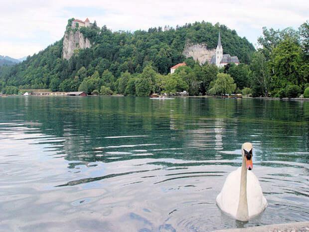 Озеро Блед, овеянное таинственными легендами