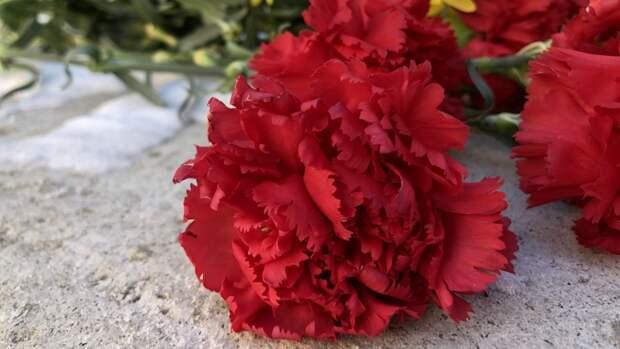 Военнослужащие ВС РФ восстановили около 100 могил ветеранов ВОВ в Таджикистане