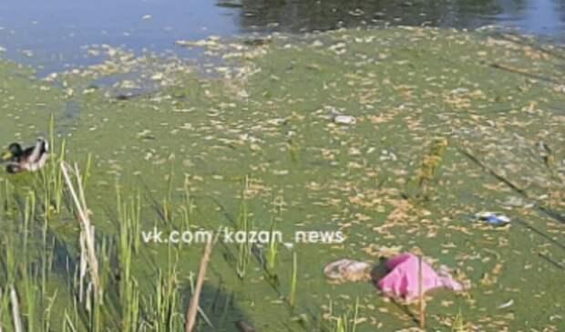 Казанцы обратили внимание назагрязненные озера накварталах