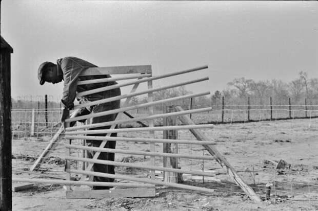 Заемщик FSA (администрации по защите фермерских хозяйств) строит новые ворота для своей фермы в Прейри Фармс, Монтгомери, Алабама, 1939 год