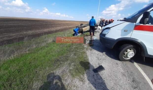 «Девятка» иFord столкнулись вБелгородской области, пассажирка погибла