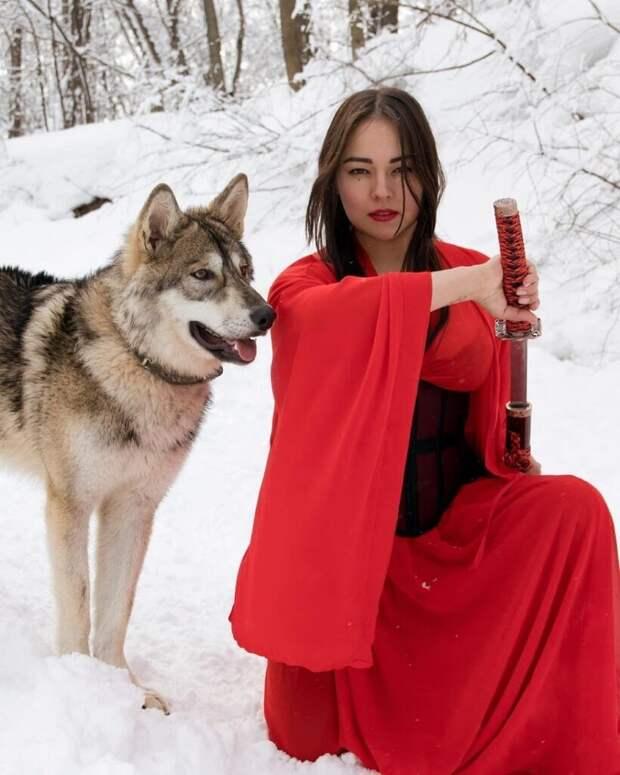 Россиянка взяла из приюта волчонка и одомашнила его