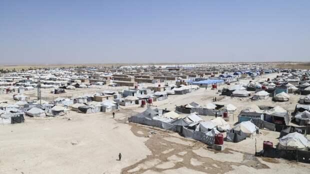 Россия призвала спасти десятки тысяч детей из лагеря Аль-Хол в Сирии