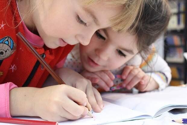 Дети, Девочка, Карандаш, Рисунок, Ноутбук, Исследование