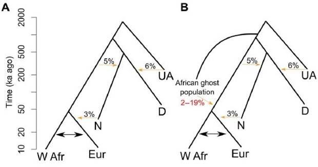 В ДНК жителей Западной Африки нашли следы неизвестных видов людей