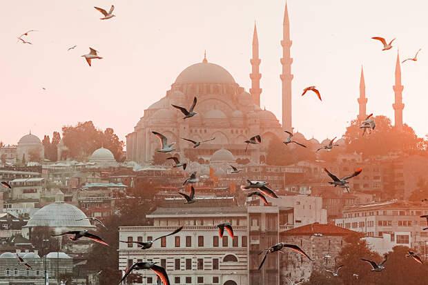 Вирусолог развеял миф об опасности поездок в охваченную COVID-19 Турцию