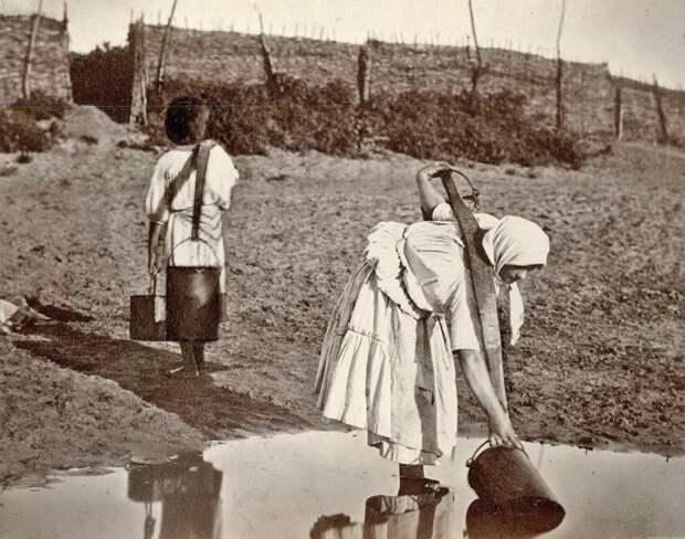 Как были устроены «шведские семьи» донских казаков до появления «духовных скреп»