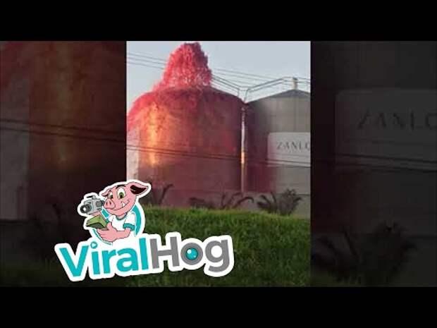 В Бразилии на заводе виноградный сок «бил фонтаном» из резервуара для хранения (видео)