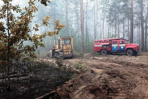 Режим ЧС из-за пожаров ввели в двух иркутских районах