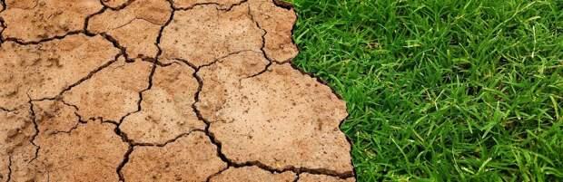 В Казахстане ожидается экстремальная засуха