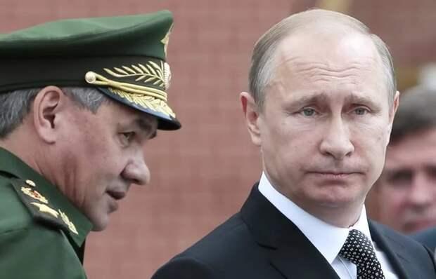 Шойгу доложил Путину о завершении взятия Пальмиры