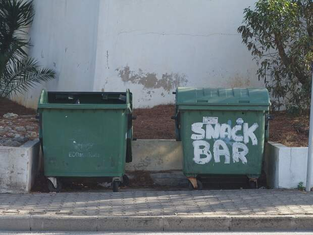 Жительница Севастополя украла городской мусорный контейнер