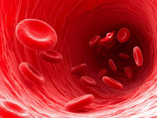 Как разжижать густую кровь