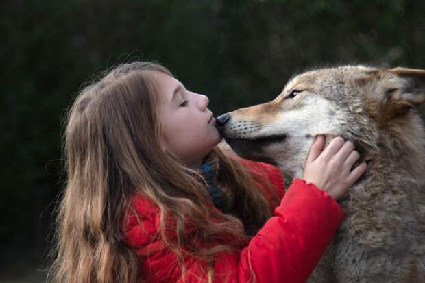 Чеки Карио подарил девочке Секрет в трейлере фильма «Мой волк»