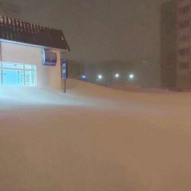 Девственный снег. | Фото: Twitter.