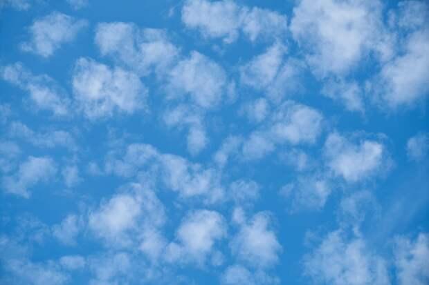 Теперь дачникам нужно постоянно следить за небом над своим домом – за ними уже наблюдают
