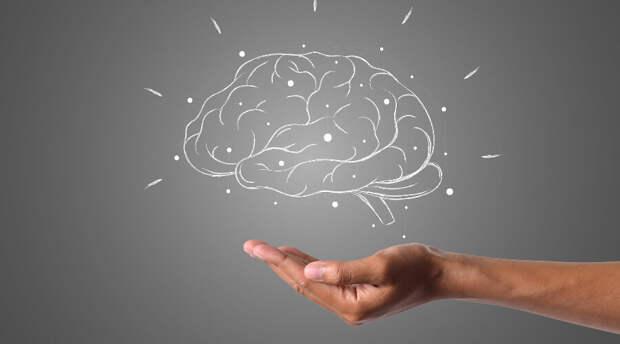 Svenska Dagbladet: замедлить старение мозга помогут семь способов