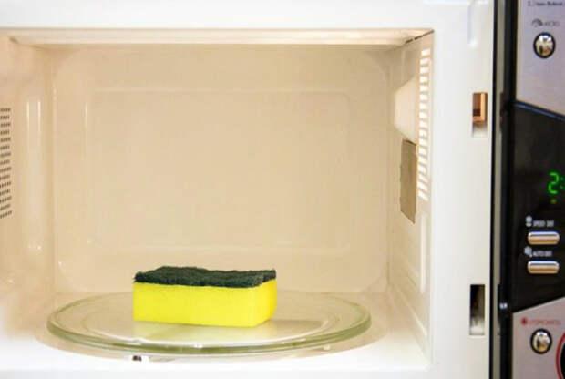 Сухую губку нельзя класть в микроволновку, чтобы не устроить пожар. / Фото: zefirka.net