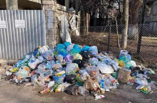 """Чебан: """"Владельцы частных домов должны иметь контракт на вывоз мусора"""""""