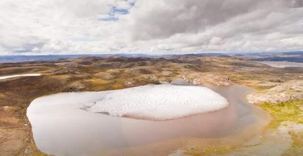 В Гренландии нашли остатки растений под 1,5-километровым слоем льда