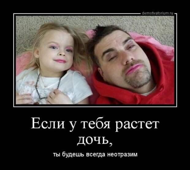 1429686512_demki-8