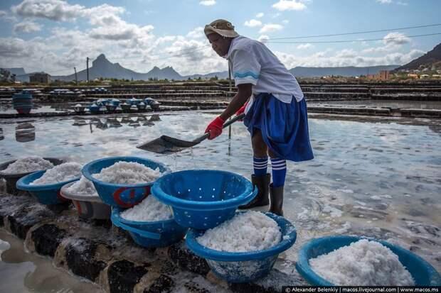 Морская соль: факты и мифы еда, факты