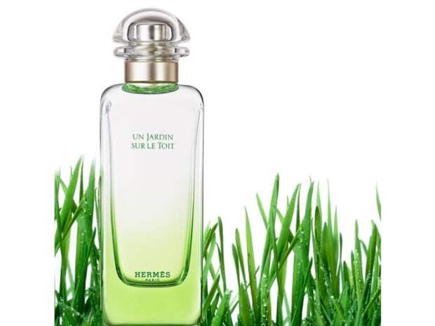 6-zelenih-mirisa-kojima-cete-ostaviti-trajni-utisak-3135-wX