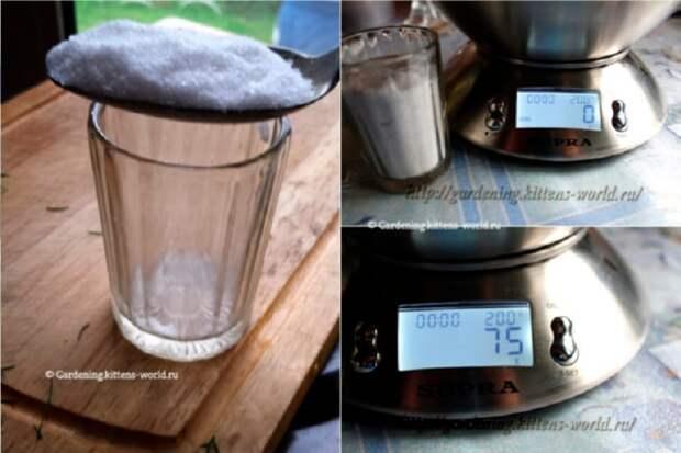 Экспресс-рецепт солёных огурцов «Прямо с Грядки»