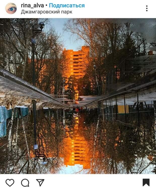 Фото дня: в Джамгаровском парке в луже открылся портал в Зазеркалье