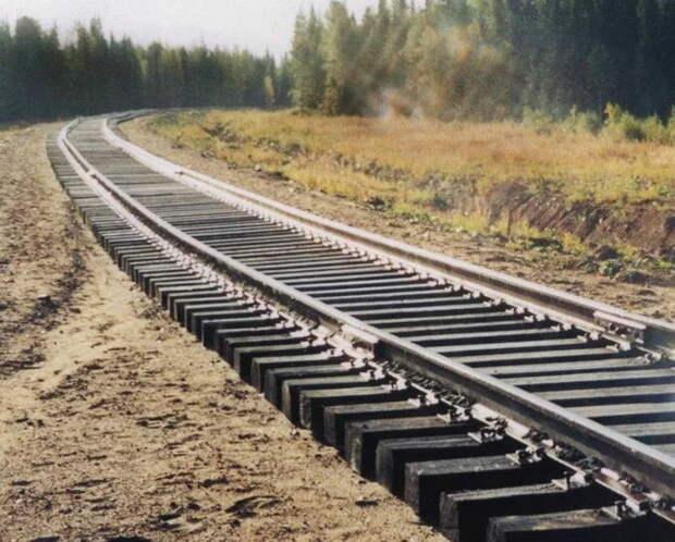 Белкомур: давний крупный проект РФ за 250 млрд руб. может возобновиться в ближайшее время