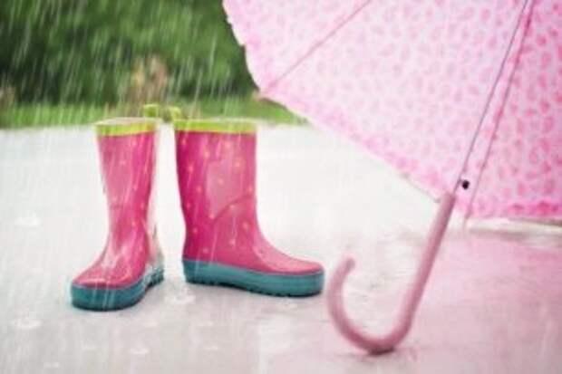 Кажется дождь собирается: когда в Череповце наконец-то выпадут осадки?