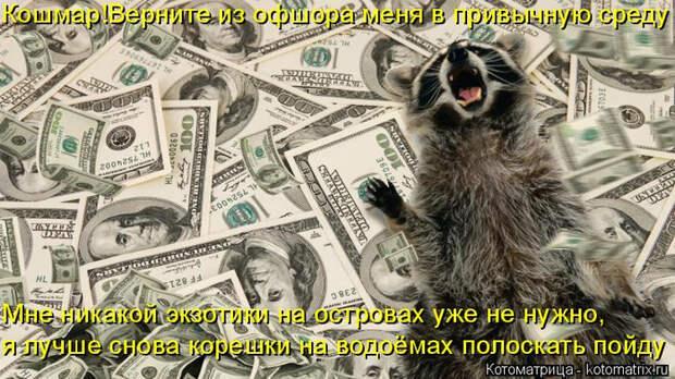 kotomatritsa_L (700x392, 371Kb)