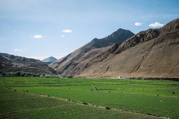 shigadze42 В поисках волшебства: Шигадзе, резиденция Панчен ламы и китайский рынок