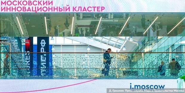 В Москве заработал новый онлайн-сервис для бизнеса — Сергунина