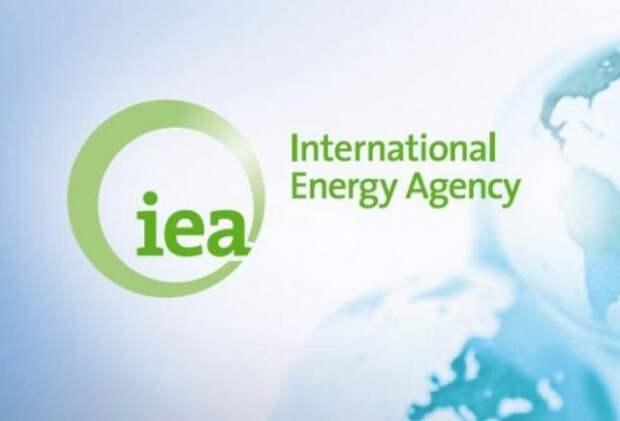 Идея МЭА не поможет достигнуть целей углеродной нейтральности