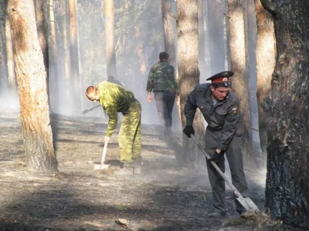 Тюменский губернатор хочет перекрыть все дороги в леса