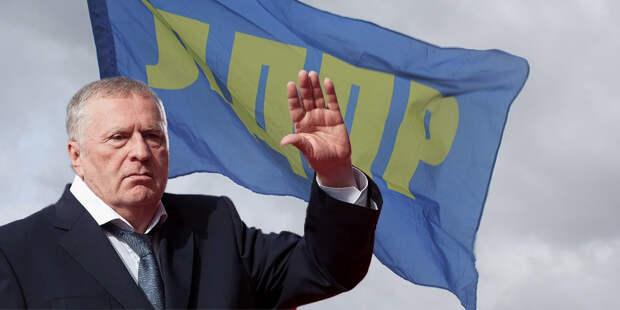 Почем мандат у Жириновского