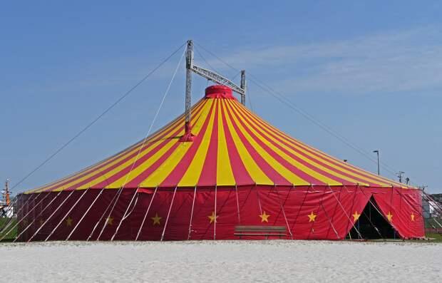 Директор симферопольского цирка мечтает вернуть шапито в Ялту