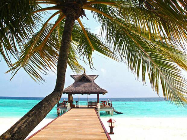 Мальдивы и Сейшелы могут закрыть из-за сильнейшего роста эпидемии COVID-19