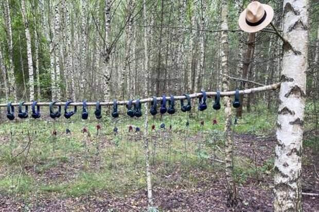 Платоновский фестиваль предлагает воронежцам прогуляться в лесу и найти себя