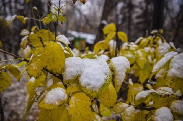 В Гидрометцентре рассказали о погодных аномалиях в российских регионах