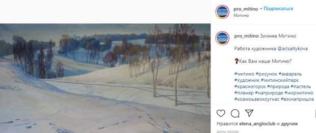 Фото дня: зима в пастельных тонах