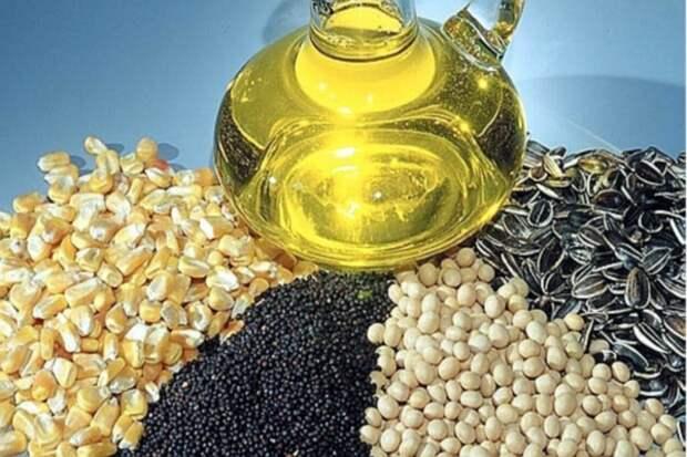 Россельхознадзор может запретить импорт подсолнечника и сои из Украины